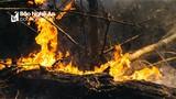 Hai ngày đêm căng mình dập lửa cứu rừng Hồng Lĩnh