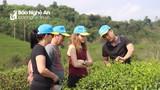 Chương trình OCOP: 'Bà đỡ' cho sản phẩm nông thôn tiêu biểu Nghệ An