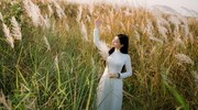 Choáng ngợp với đồng cỏ lau bên bãi bồi sông Lam