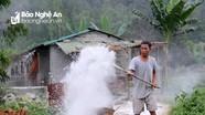 Xuất hiện thêm ổ dịch tả lợn châu Phi ở Nghệ An
