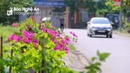 Con đường có trăm chậu hoa giấy, sạch sẽ bậc nhất thành Vinh
