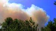 Nghệ An: Hàng ngàn người căng mình dưới nắng nóng dập lửa cứu rừng