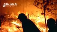 Trắng đêm dập lửa, cứu rừng thông cháy ngùn ngụt ở Nghệ An