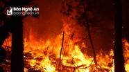 Triệu tập một người phụ nữ liên quan đến vụ cháy rừng ngày 10/7 tại Diễn Châu