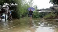 Nước sông Lam dâng cao, người dân Hưng Hòa (TP.Vinh) thấp thỏm chạy lũ