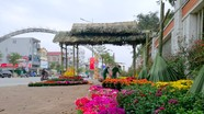 Thành phố Vinh hoãn chạy thử phố đi bộ vì dịch Covid - 19