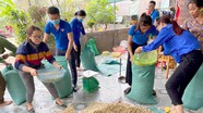 Nghệ An: Giải cứu gần 10 tấn hành tăm cho nông dân