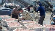 Nghệ An: Hải sản ế ẩm khi các ca nhiễm Covid-19 ở Hà Tĩnh liên tục tăng