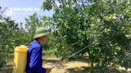 Giảm thiểu ô nhiễm môi trường do thuốc bảo vệ thực vật