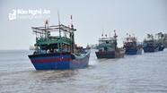 """Nỗ lực gỡ bỏ """"thẻ vàng"""" đối với khai thác hải sản của Việt Nam"""