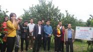 Người trồng cam 5 tỉnh Bắc Trung Bộ tham quan vườn cam Đồng Thành (Yên Thành)