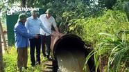 Phó Chủ tịch UBND tỉnh Hoàng Nghĩa Hiếu chỉ đạo cứu lúa tại Hưng Nguyên và Nghi Lộc