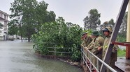 Các cống tiêu chính ở Nghệ An được mở để chống ngập