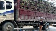 Người đàn ông chết thảm dưới bánh xe tải chở mía ở Nghệ An