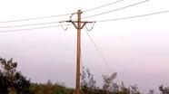 Trèo lên trụ điện bắt chim, người đàn ông bị điện giật tử vong