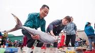 Chú trọng an toàn thực phẩm trong Liên hoan Ẩm thực du lịch quốc tế Nghệ An