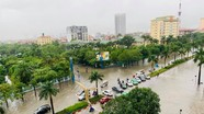 Đề xuất một số giải pháp chống ngập cho đô thị Vinh
