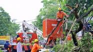 Công ty Điện lực Nghệ An: Nâng tầm hợp tác, hướng tới tương lai phát triển bền vững