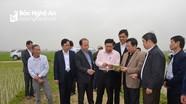 Chủ tịch UBND tỉnh Nguyễn Xuân Đường thăm đồng đầu năm