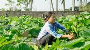 Cần huy động nguồn lực gây quỹ hỗ trợ nông dân  