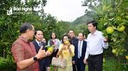 Đại sứ Thái Lan trải nghiệm du lịch cộng đồng tại Nghệ An