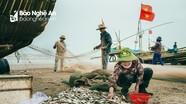 Cùng ngư dân làng biển Xuân Châu đón cá về