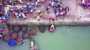 Lao xao bến cá Cửa Hội