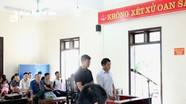 3 năm tù cho mỗi đối tượng trong vụ án hủy hoại rừng ở Quế Phong