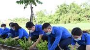 Ngày cao điểm 'Chiến sỹ tình nguyện chung tay xây dựng nông thôn mới' của tuổi trẻ Nghệ An