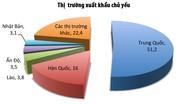 156 doanh nghiệp ở Nghệ An tham gia xuất khẩu