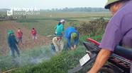 Nông dân Thanh Chương dùng khói ống bô xe máy bắt chuột