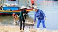 Ngư dân Nghệ An trúng mùa ruốc biển