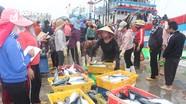 Tàu vây Nghệ An ra khơi 2 đêm trúng mẻ cá gần 400 triệu đồng