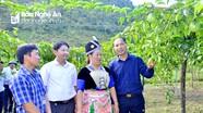 Chi tiết sáp nhập xóm, bản tại các huyện Kỳ Sơn, Tương Dương