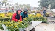Công nhân dầm mưa trang trí Tết ở thành Vinh