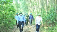 Phó Chủ tịch UBND tỉnh Hoàng Nghĩa Hiếu kiểm tra công tác phòng, chống cháy rừng tại Yên Thành