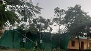 Nghệ An: Thời tiết cực đoan, nguy cơ xảy ra giông lốc, mưa đá và lũ quét