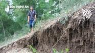Triền núi bị nứt toác, uy hiếp hàng chục nhà dân ở Nghệ An