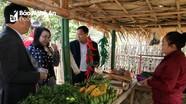 Phụ huynh vùng biên ở Nghệ An góp nông sản, bán làm quỹ hội