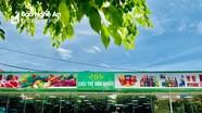 Huyện Yên Thành tìm người đến hàng loạt cửa hàng, siêu thị liên quan bệnh nhân Covid-19