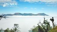 Săn mây ở  nơi cao nhất xứ Nghệ