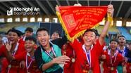 Khởi động Giải bóng đá Thiếu niên - Nhi đồng Cúp Báo Nghệ An năm 2021