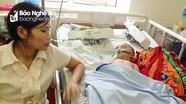 Nghệ An: Bé trai 19 tháng tuổi suy gan nặng do bị ong đốt hàng chục vết