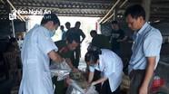 Diễn Châu: Bắt giữ 3,6 tấn sứa sử dụng chất bảo quản không rõ nguồn gốc