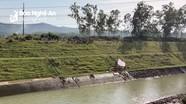 Tìm thấy thi thể nam thanh niên đuối nước ở Đô Lương