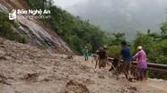 Nỗ lực ổn định cuộc sống sau lũ ở các huyện miền Tây Nghệ An