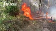Khống chế vụ cháy rừng thông ở Yên Thành
