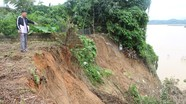 Báo động nguy cơ sông 'nuốt' làng tại 3 xã ven sông Lam