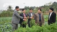 Nghệ An trình Trung ương công nhận huyện Nam Đàn đạt chuẩn NTM