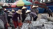 Nghệ An: 4 tháng đánh bắt gần 43 nghìn tấn thủy hải sản